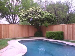 18 Eight Foot Board On Board Cedar Fence With Pressure